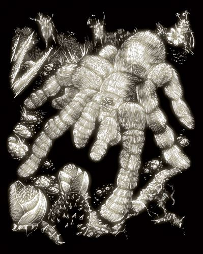 Škrábací obrázek svítící ve tmě - Pavouk tarantule