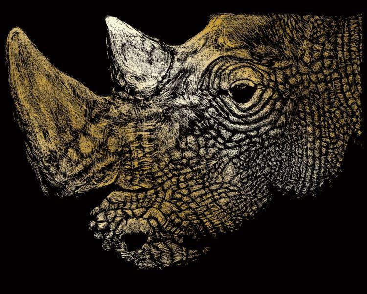 Škrábací obrázek zlatý - Nosorožec
