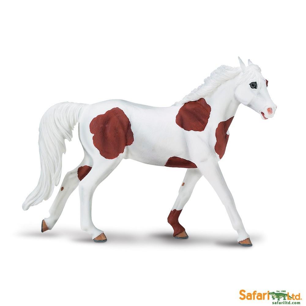 Hřebec American Paint Horse