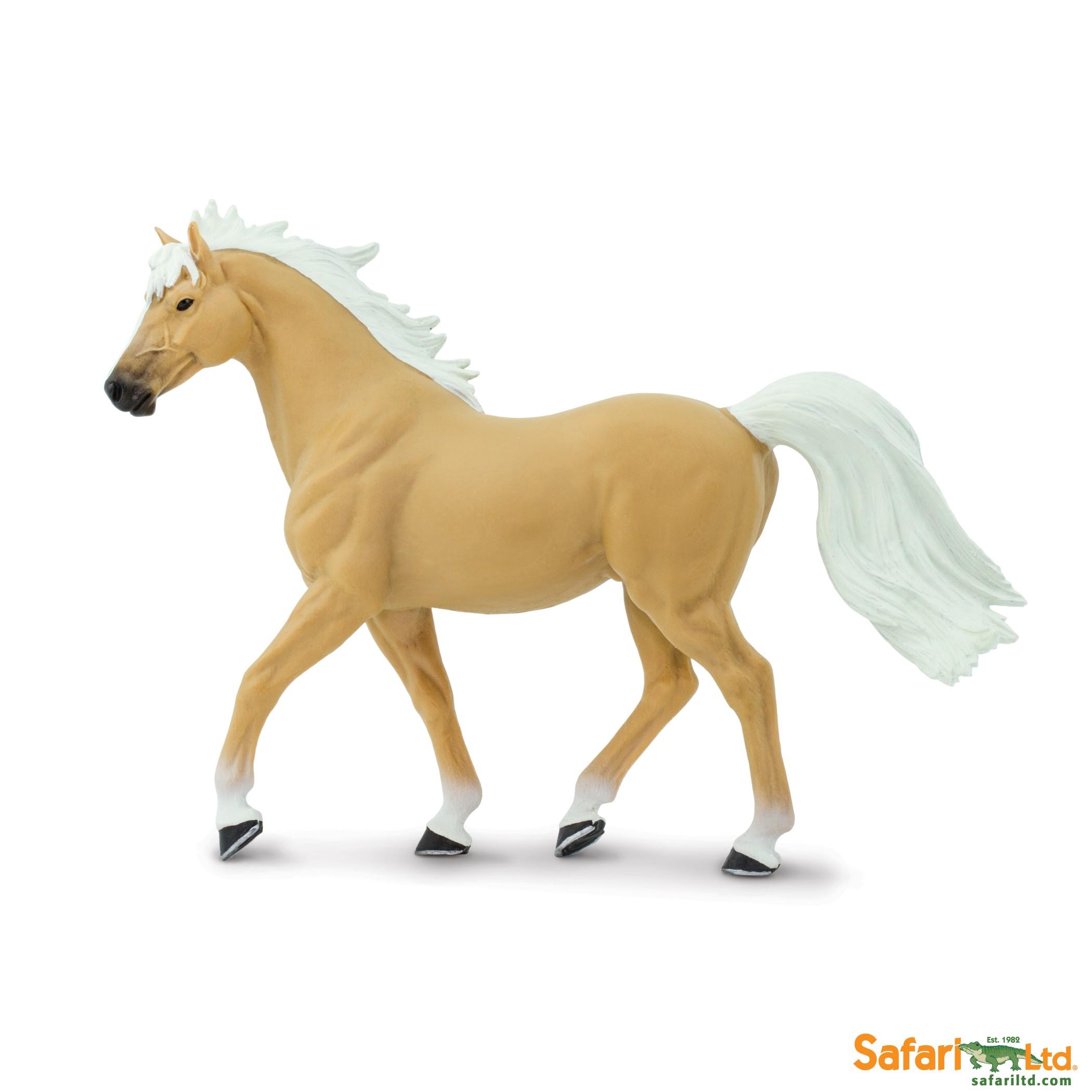 Palomino Mustang hřebec
