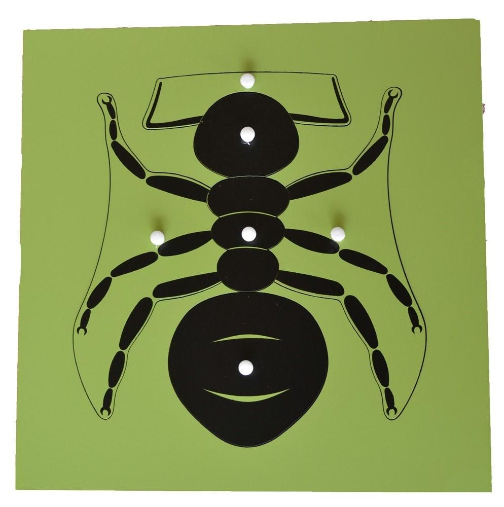 Puzzle - mravenec