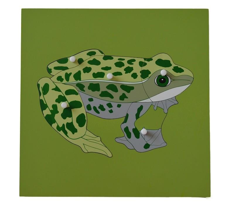 Puzzle s kostrou - žába