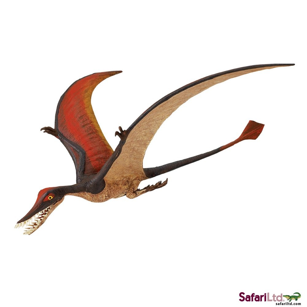 Ramphorhynchus