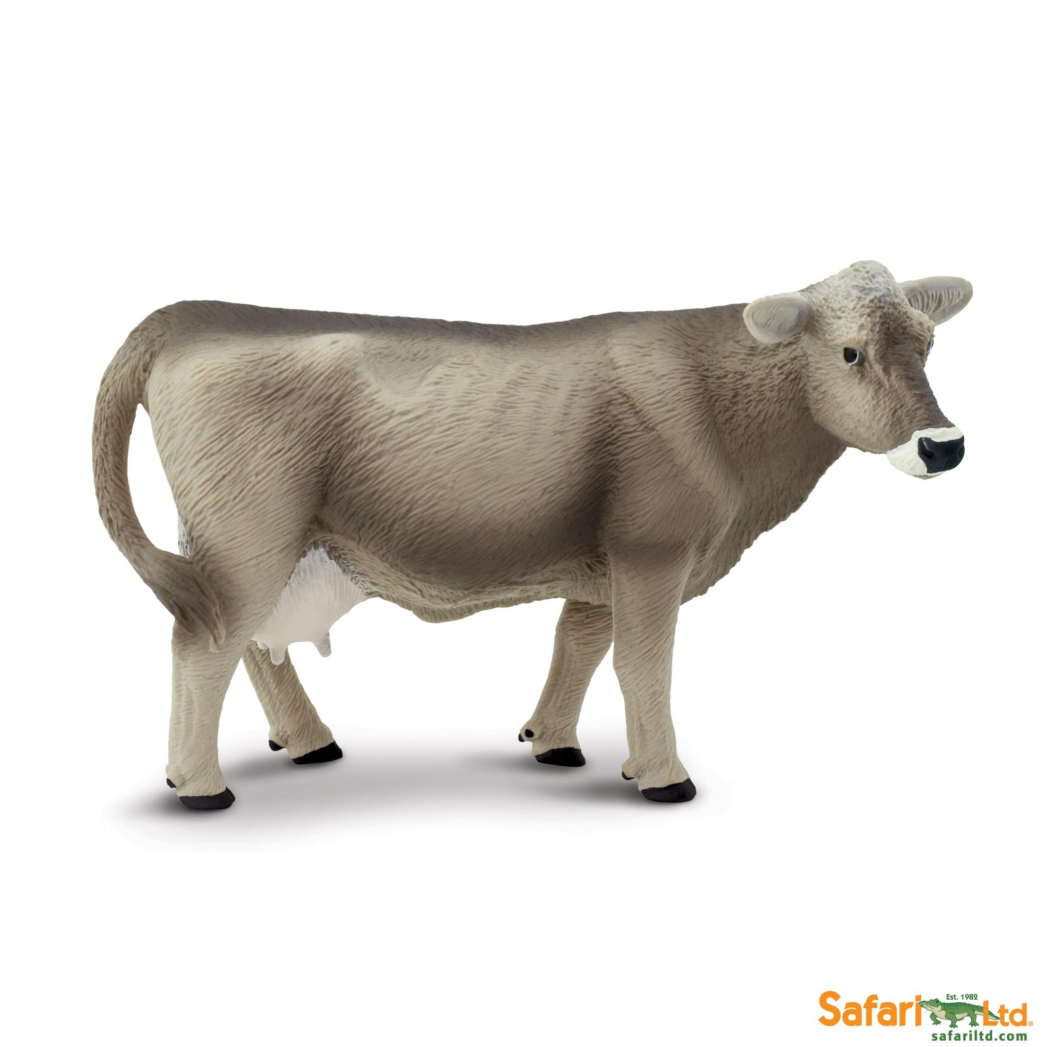 Švýcarská hnědá kráva