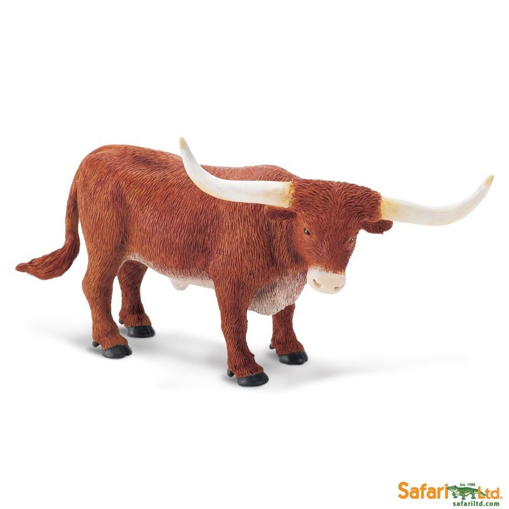 Texaský dlouhorohý býk