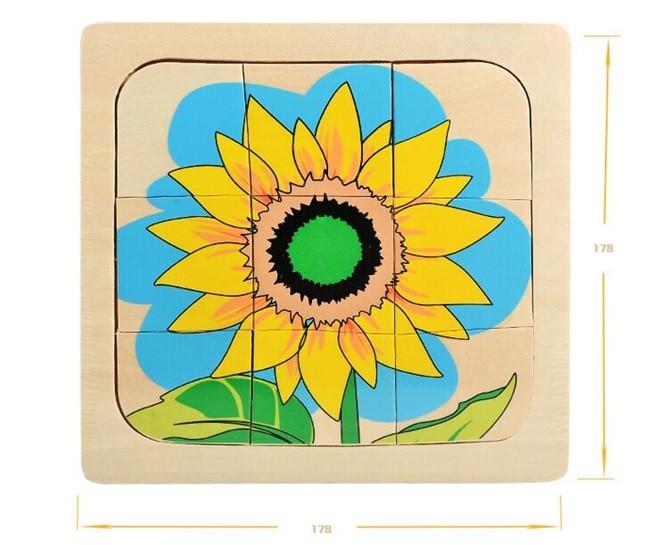 Životní cyklus květiny